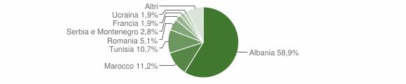 Grafico cittadinanza stranieri - Bienno 2007