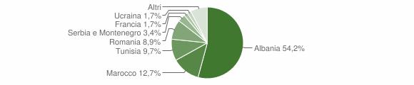 Grafico cittadinanza stranieri - Bienno 2008