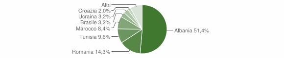 Grafico cittadinanza stranieri - Bienno 2013