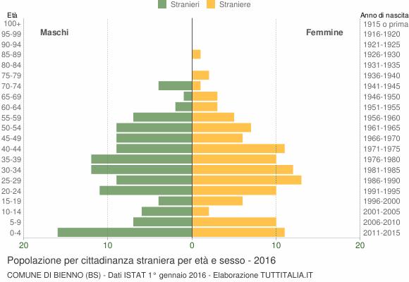 Grafico cittadini stranieri - Bienno 2016