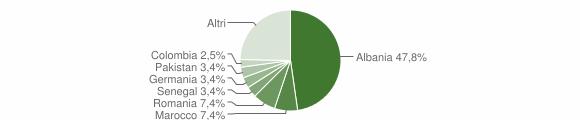 Grafico cittadinanza stranieri - Puegnago del Garda 2010