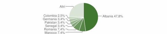 Grafico cittadinanza stranieri - Puegnago sul Garda 2010