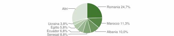 Grafico cittadinanza stranieri - Settala 2019