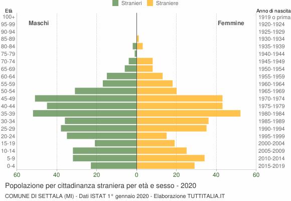 Grafico cittadini stranieri - Settala 2020