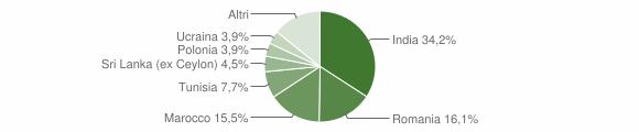 Grafico cittadinanza stranieri - Piubega 2019
