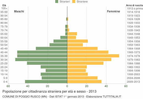 Grafico cittadini stranieri - Poggio Rusco 2013
