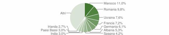 Grafico cittadinanza stranieri - Travedona-Monate 2019