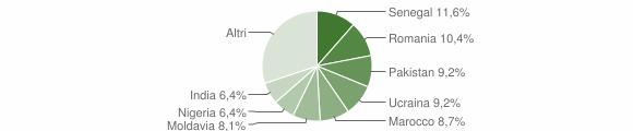 Grafico cittadinanza stranieri - Caino 2010