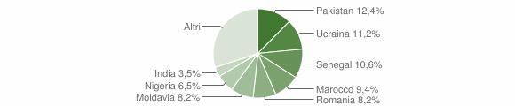 Grafico cittadinanza stranieri - Caino 2011