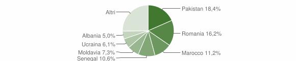 Grafico cittadinanza stranieri - Caino 2013