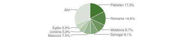 Grafico cittadinanza stranieri - Caino 2015