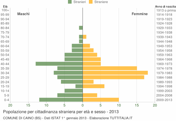 Grafico cittadini stranieri - Caino 2013