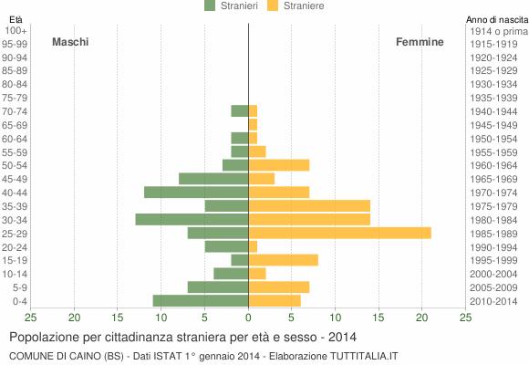 Grafico cittadini stranieri - Caino 2014