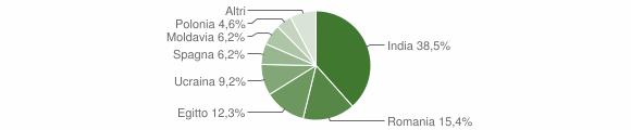 Grafico cittadinanza stranieri - Fiesco 2019