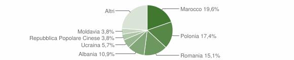 Grafico cittadinanza stranieri - Solferino 2011