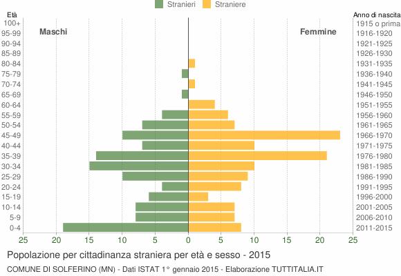 Grafico cittadini stranieri - Solferino 2015