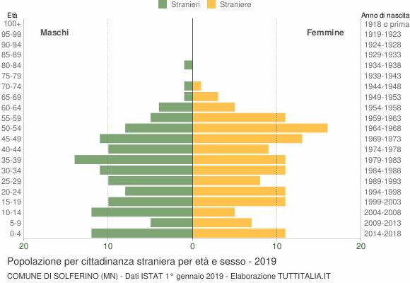 Grafico cittadini stranieri - Solferino 2019