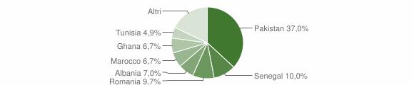 Grafico cittadinanza stranieri - Lumezzane 2010