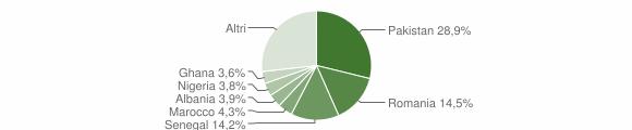 Grafico cittadinanza stranieri - Lumezzane 2019