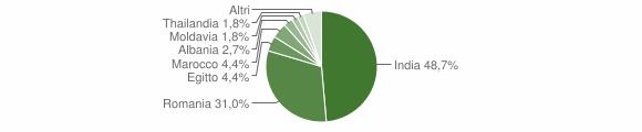 Grafico cittadinanza stranieri - San Daniele Po 2019