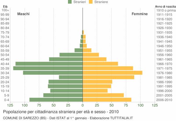 Grafico cittadini stranieri - Sarezzo 2010