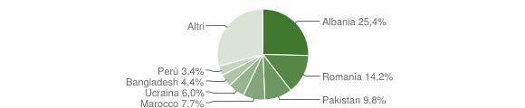 Grafico cittadinanza stranieri - Seveso 2010