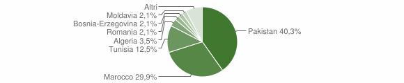 Grafico cittadinanza stranieri - Bione 2008