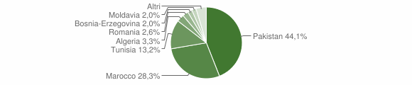 Grafico cittadinanza stranieri - Bione 2009