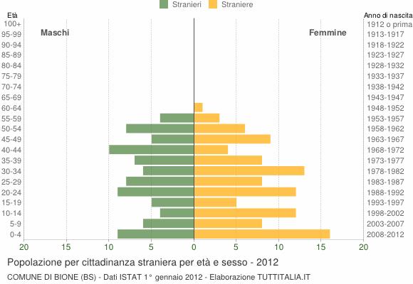 Grafico cittadini stranieri - Bione 2012