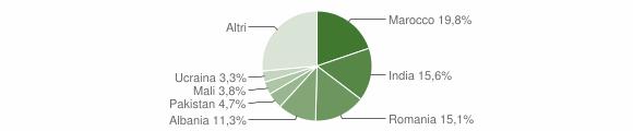 Grafico cittadinanza stranieri - Brandico 2010