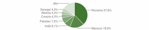 Grafico cittadinanza stranieri - Brandico 2019