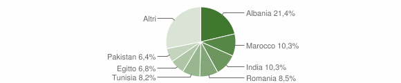 Grafico cittadinanza stranieri - Berlingo 2008