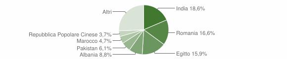 Grafico cittadinanza stranieri - Berlingo 2019