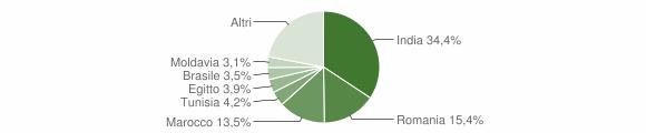 Grafico cittadinanza stranieri - Gazzuolo 2019