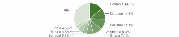 Grafico cittadinanza stranieri - Rodengo Saiano 2010