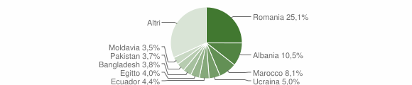 Grafico cittadinanza stranieri - Varedo 2019