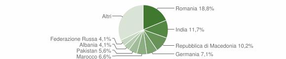 Grafico cittadinanza stranieri - Soiano del Lago 2013
