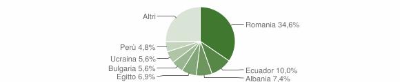 Grafico cittadinanza stranieri - Tribiano 2019