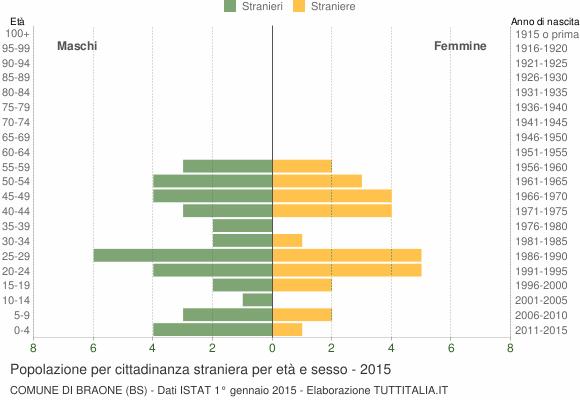 Grafico cittadini stranieri - Braone 2015
