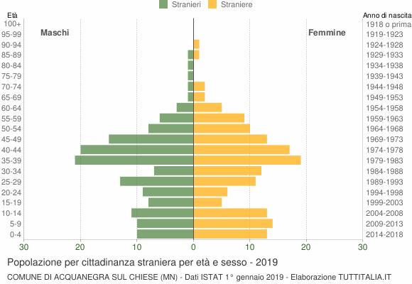 Grafico cittadini stranieri - Acquanegra sul Chiese 2019