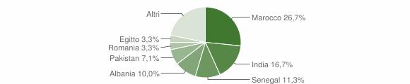 Grafico cittadinanza stranieri - Maclodio 2010