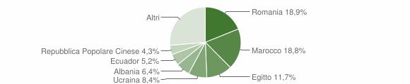 Grafico cittadinanza stranieri - Gerenzano 2019