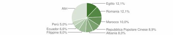 Grafico cittadinanza stranieri - Rozzano 2019