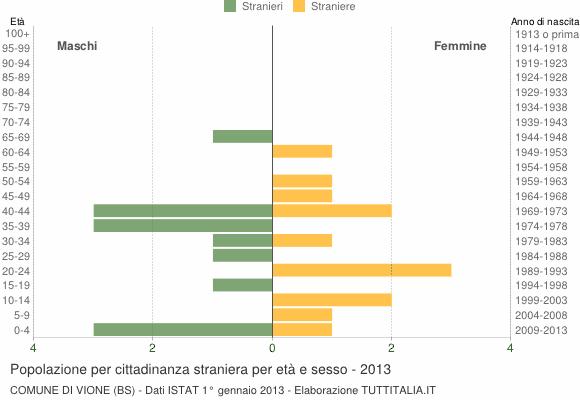 Grafico cittadini stranieri - Vione 2013