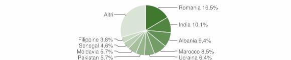 Grafico cittadinanza stranieri - Gussago 2019