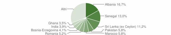 Grafico cittadinanza stranieri - Nave 2007