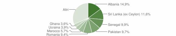Grafico cittadinanza stranieri - Nave 2009