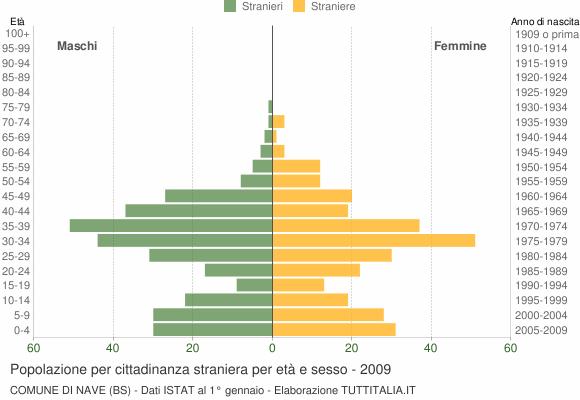 Grafico cittadini stranieri - Nave 2009