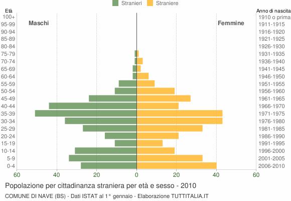 Grafico cittadini stranieri - Nave 2010