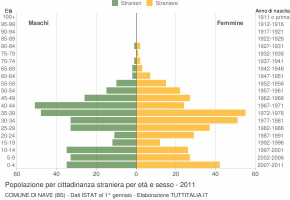 Grafico cittadini stranieri - Nave 2011